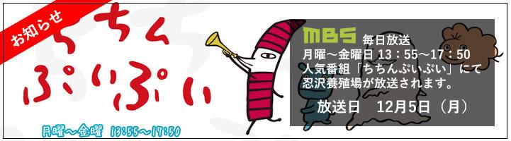 MBS 毎日放送 ちちんぷいぷい